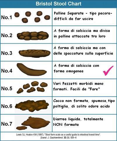 signs of poop